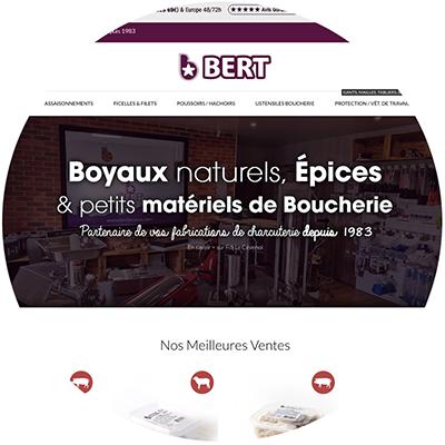 Un Nouveau site web !  Bert